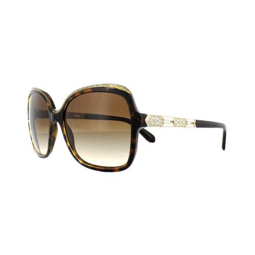 Bvlgari Sunglasses BV8181B 5353//13 Havana Gold Brown Gradient