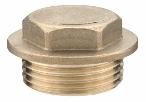 "1/"" Brass Flanged Plug"