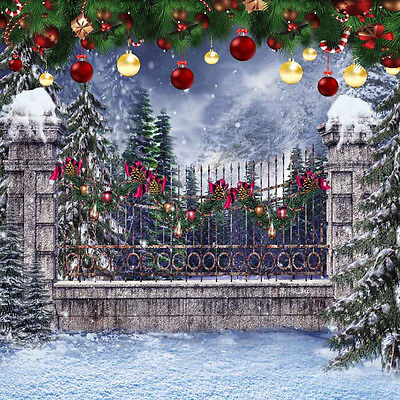 Mysterious Xmas 10'x10' CP Backdrop Computer printed Scenic Background L-870