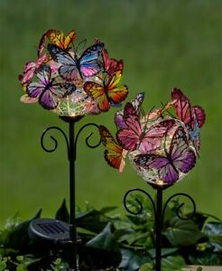 Set-of-2-Solar-Colorful-BUTTERFLY-Garden-Stakes-Yard-Lawn-Pathway-Outdoor-Decor