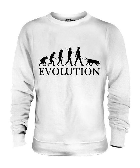 FLAT COATED RETRIEVER EVOLUTION DES MENSCHEN UND HUND UNISEX PULLI HERREN DAMEN