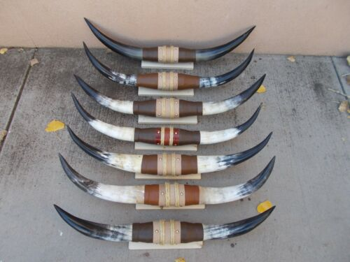 """LONGHORN 28/"""" to 29/"""" MOUNTED STEER HORNS NEW COW BULL LONG ONE SET ONLY"""