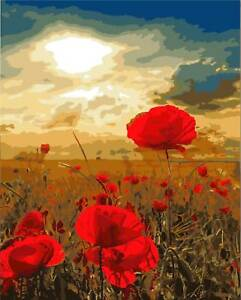 Poppy flower diy paint by number kit acrylic oil painting on canvas image is loading poppy flower diy paint by number kit acrylic mightylinksfo