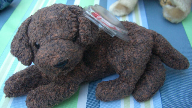 42d1c620915 Fetcher The Dog - Ty Beanie Baby. HUGE Saving