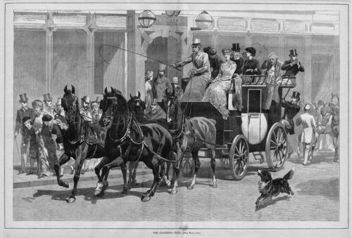 HORSES COACHING CLUB FOUR IN HAND DOG CARRIAGE 1881 DECORATIVE ANTIQUE COACHING
