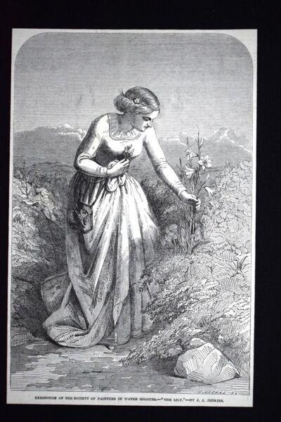 """""""il Giglio"""" - Del Pittore Inglese Joseph John Jenkins Incisione Del 1851 Facile Da Riparare"""