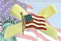 Usa Pin; American Flag On Yellow Troop Support Ribbon, Gold Plate,