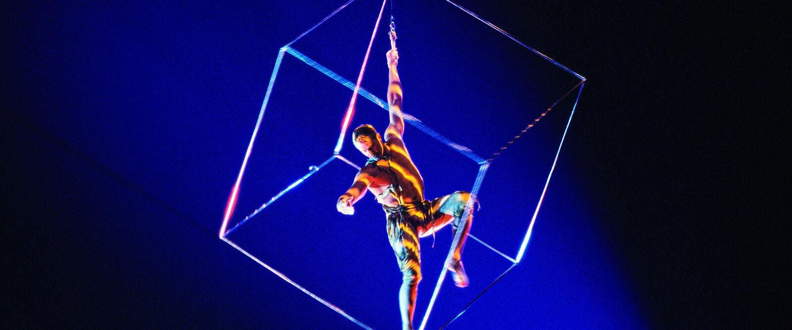Cirque du Soleil Mystere Las Vegas