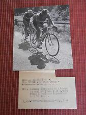 photo presse cyclisme vélo - Tour de France 1952 - LAUREDI - D GAUTHIER ( ref 23