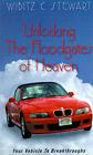 Unlocking the Floodgates of Heaven: Your Vehicle to Breakthroughts by Wibitz C Stewart (Paperback / softback, 2001)