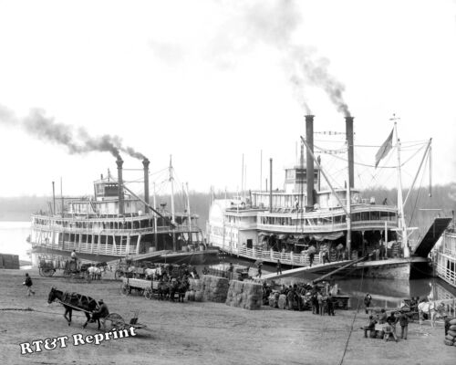 Photograph Steamships Belle of the Bends /& Belle of Calhoun Year 1904 8x10