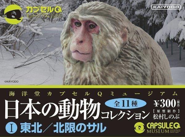 KAIYODO Capsule Q Museum Japan's animals Basic set of 11 pcs