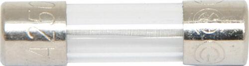 250V Slow-Blow Fuse M205 3.15A 5x20