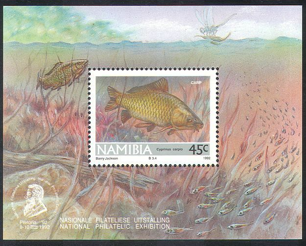 Namibie 1992 poissons/Libellule/Insectes/nature F/S (n16675)