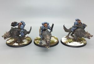 WARHAMMER-40-000-SPACE-MARINES-SPACE-WOLVES-THUNDERWOLF-CAVALRY-PAINTED