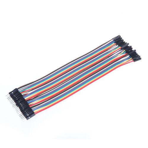 40x 20cm 2,54 mm Jumper Kabel cable Verbindungskabel Arduino Raspberry Pi Board