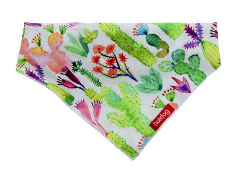 Annabel Trends Hot Dog Bandanas Gorgeous Fabric Range