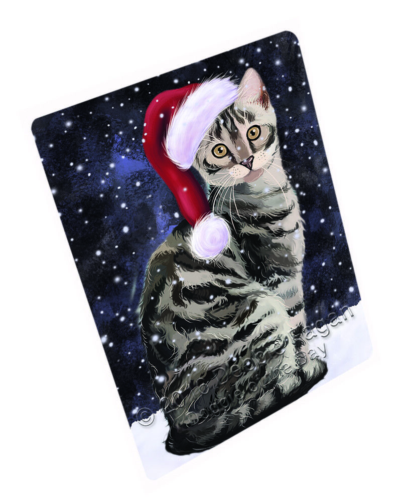 Let it Snow Christmas Holiday Bengal Cat Woven Throw Sherpa Blanket T115