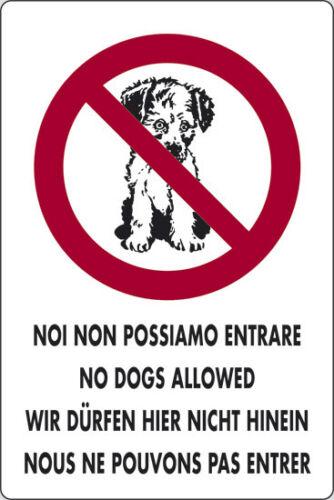 Cartello Segnaletico Noi Non Possiamo Entrare No Cani 30x20Cm In Pvc Targa dfh