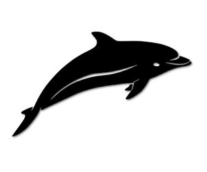 Delfin dolphin Delphin Aufkleber Autoaufkleber Sticker Meer See decal 24#8073