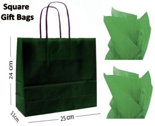 Dark Green Square Paper Party Gift Bags /& Tissue Wrap ~ Boutique Shop Loot Bag