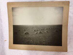 Vintage-Cabinet-Photo-Wheat-Stacks-Hay-Farming-Circa-1910-ND-8x10