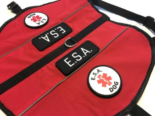 Therapy Dog Service Dog ALL ACCESS CANINE™ Emotional Support Animal ESA Dog