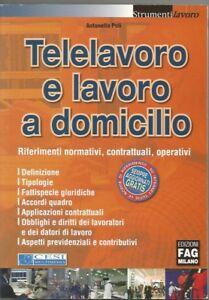 TELELAVORO-E-LAVORO-A-DOMICILIO-ANTONELLA-POLI-CESI-MULTIMEDIA-EDIZIONI-FAG-2005