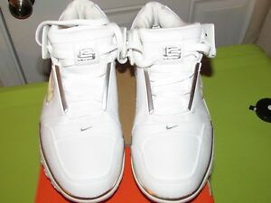 2004 NIKE AIR ZOOM GENERATION LOW LEBRON WHITE/SILVER METALLIC vintage with box