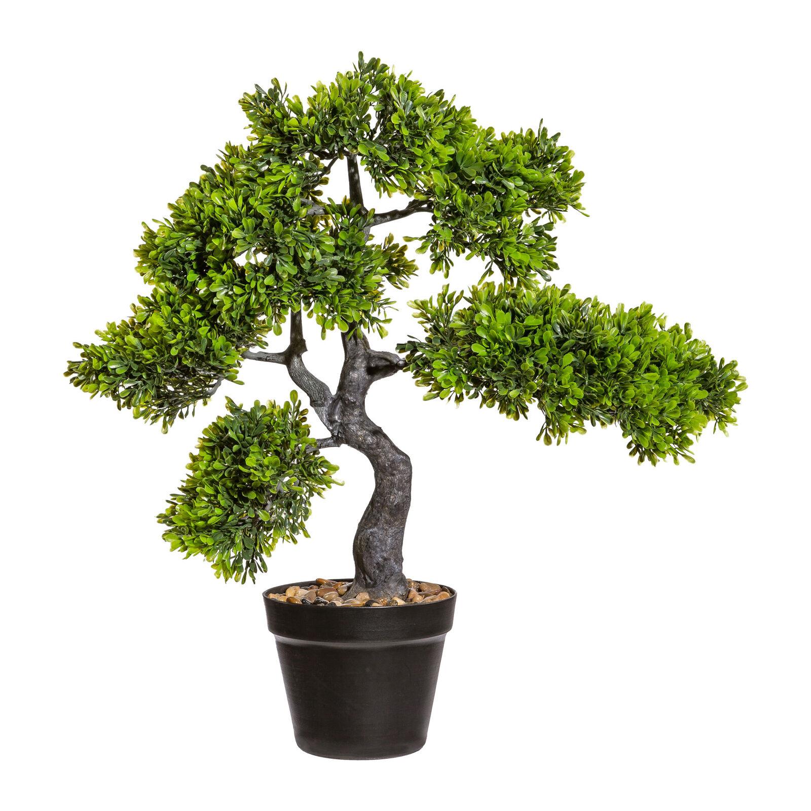 Kunstpflanze Bonsai Teeblatt grün, mit schwarzem Kunststoff-Topf, Höhe ca. 55 cm