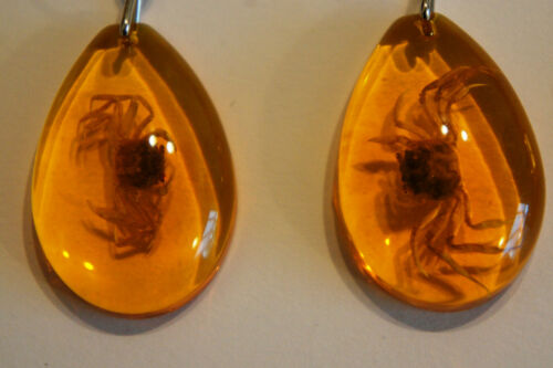 ZODIAC CANCER CRAB AMBER EFFECT PRESERVED CRAB KEY RING CRAB KEY RING