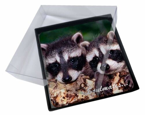 4x Racoons in Love 'Soulmates' Picture Table Coasters Set in Gift Box, SOUL78C