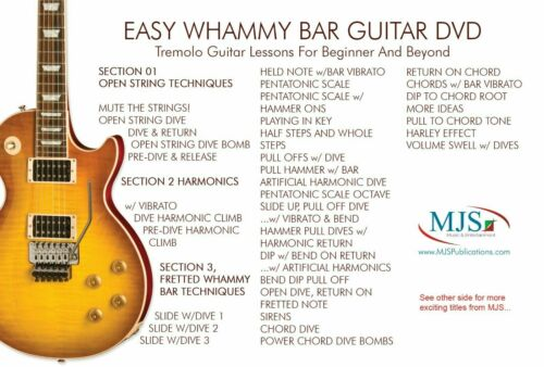 HOW TO USE THE WHAMMY BAR Guitar Lessons Tricks and Techniques for the Tremolo