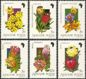 Hungary-1990-African-Flowers-Protea-Plants-Nature-Conservation-6v-set-n21947