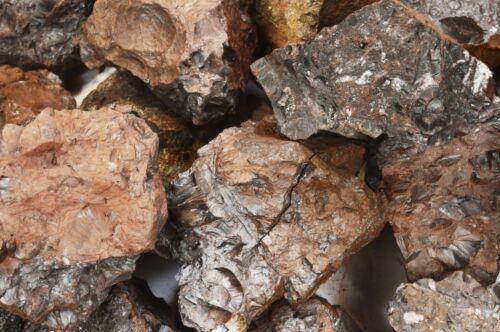 "Red Hematite 3/""-4/"" 13-15 Oz Rock Mineral Specimen Rough Natural Stone Raw"