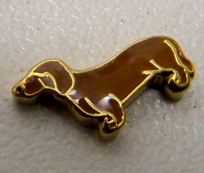 charm for living glass floating locket, dog weiner dachshund