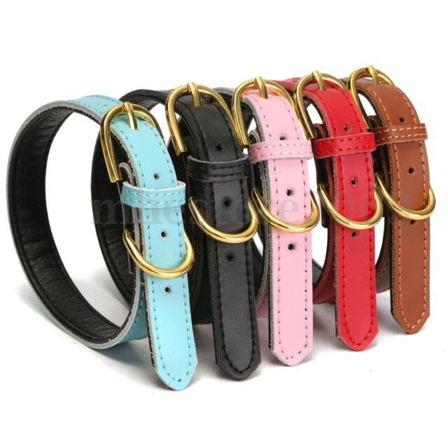 Adjustable PU Leather Dog Pet Puppy Cat Soft Padded Collar Necklace Belt M Size