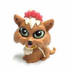 Promotion Littlest Pet Shop Lps Terri Bowman 3802 Brown Yorkie