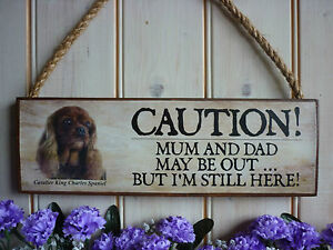 PERSONALISED-CAVALIER-KING-CHARLES-GIFT-CAUTION-SIGN-BEWARE-OF-THE-DOG-SIGN-GIFT