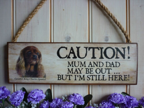 PERSONALISED DOG SIGN CAVALIER KING CHARLES SIGN WEATHERPROOF GARDEN GATE SIGN