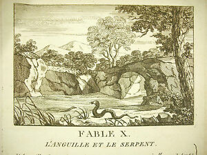 Intelligent Fable L'anguille Et Le Serpent C 1800 The Eel And The Snake Story Gravure Print