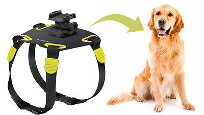 SONY ACTION CAMERA Dog harness mount AKA-DM1 RRP $49.95