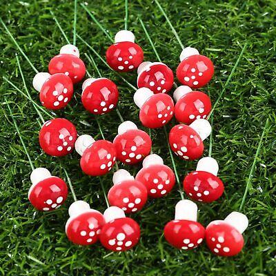 Mini 20x Mushroom Garden Ornament Miniature Plant Pot Fairy  DIY  Dollhouse MW