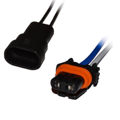 HB3 Stecker Fassung Sockel Lampensockel 9005 Steckverbindung Auto KFZ Kabel