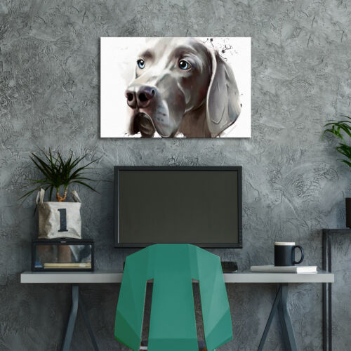 Grey Hound Watercolour  Funky Animal Canvas Wall Art Large Picture Prints
