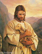JESUS Carrying Lamb / Christian - Christianity 11 x 14 GLOSSY Photo Picture