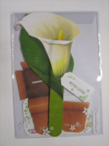 3D Flower Power Greetings Card 12 Designs Congratulations With Love You Best Mum