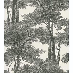 Passepartout Arbres Papier Peint Noir Blanc Rasch 605419 Ebay