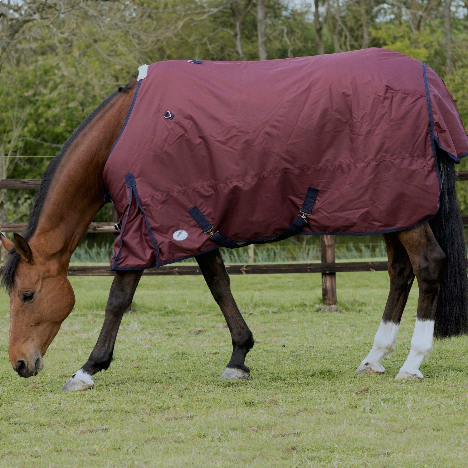 JHL ESSENTIAL TURNOUT RUG LIGHTWEIGHT BURGUNDY NAVY ALL SIZES