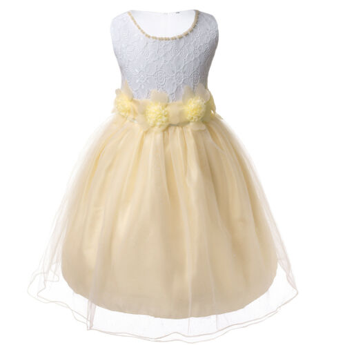 Flower Girl Shiny Tulle Tutu Dress for Baby Kids Wedding Bridesmaid Formal Party
